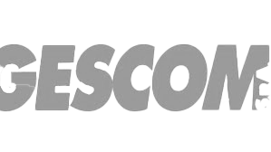 Luibao is the consulting and purchase partner for Gescom Italy for different industrial printer parts and products