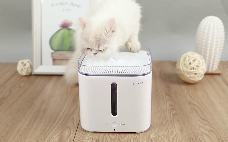 smart machine and automation technology is largely implemented into pet industry in china as the pet industry grows rapidly in recent years