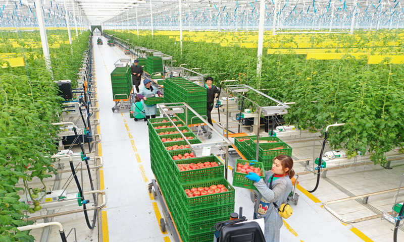 high technology applied to china agriculture industry and more to the value chain in the future indicated by two sessions 2021